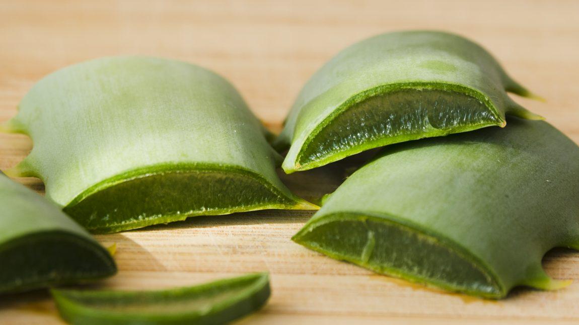 12 Eigenschaften von Aloe Vera